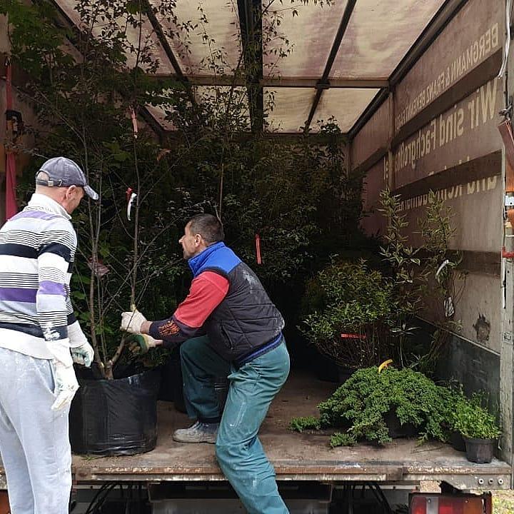 перевозка растений по днепру